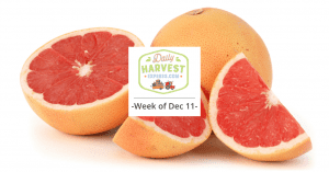 Cara cara oranges and more! What's coming in next week's farm box…
