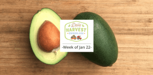 Coming this week 1/22/18: Bacon avocados and more!