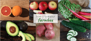 How to use everything in your weekly farmbox