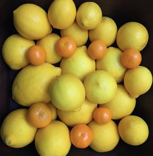 We recently wrote about Linda Zaiser of Rancho Del Sol, an organic citrus farm that we're so proud to support!