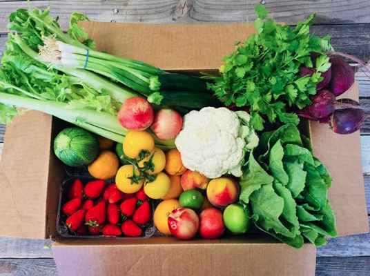 A Daily Harvest FarmBox full of fresh, organic goodies from local farms!